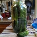 Pack into pickle jar. Pickle tetris!