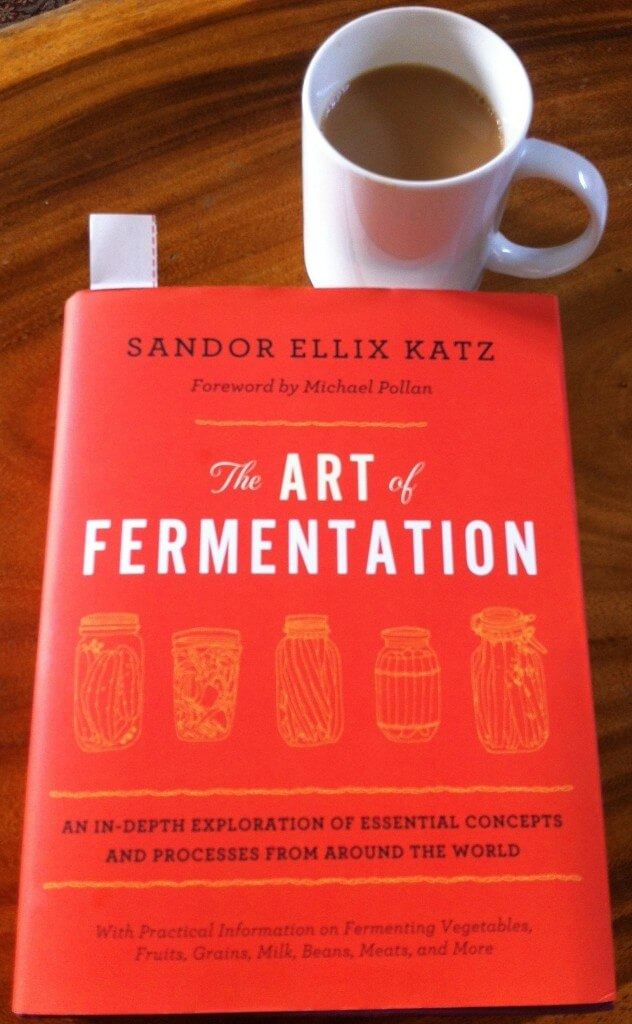 Book Review The Art Of Fermentation Fermenters Club